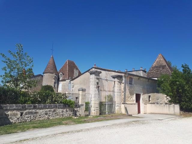 Profoodsupport- de wijnen van Chateau La Tulipe
